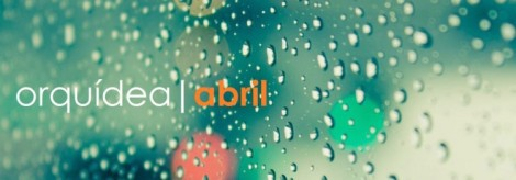 Álbum Abril - Orquídea
