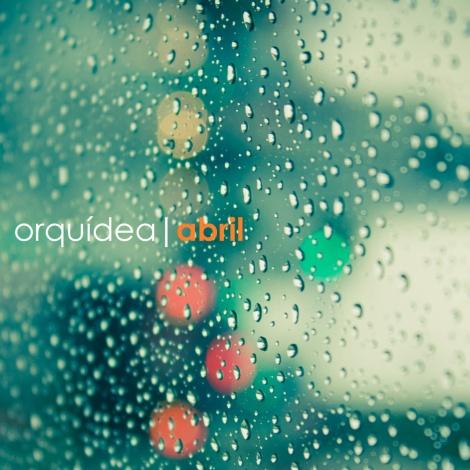 Orquídea - Abril